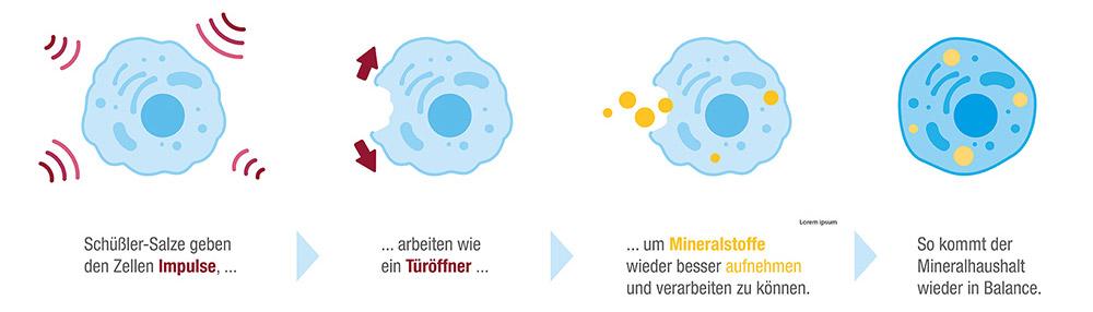 201103_DHU_Wirkprinzip_Grafik_1000x1000.jpg